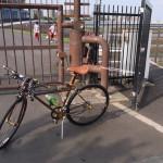 自転車乗った。