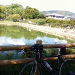 [ロードバイク] 高槻~79号(伏見柳谷高槻線)~長岡京ツーリング