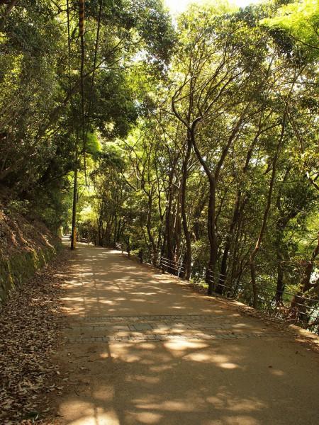 自然あふれる宇治川沿い