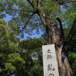 京都、下鴨神社などをお散歩した。