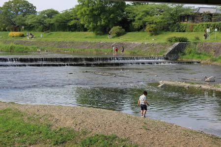 賀茂川で遊ぶ子供