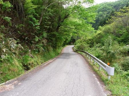 羽束川沿いを走る