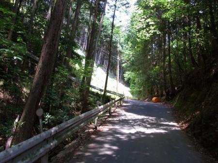 嵐山奥の林道