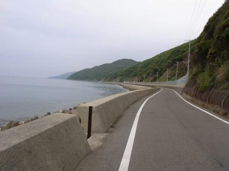 南淡路水仙ライン