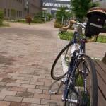 梅雨の合間のサイクリング!いつもの淀川サイクリングロードを枚方関西医大まで。