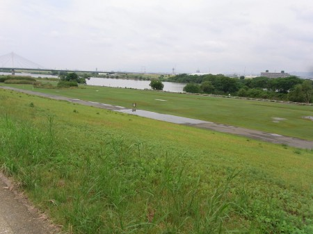 水溜りだらけの淀川
