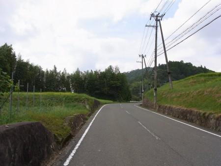 R602のちょっとした峠道
