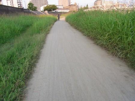 神崎川CRは砂地化