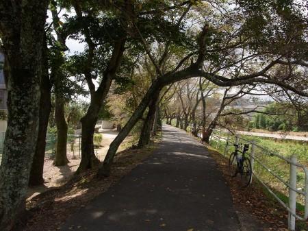 ステキな風景@道場近辺