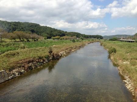 道場の武庫川