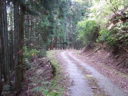 林道を下る