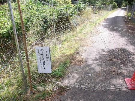 曾地奥林道の網