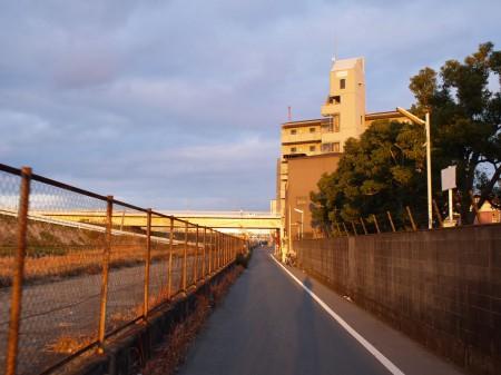 淀川沿いの一般道を