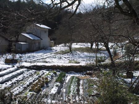 少し入れば雪も残っていました