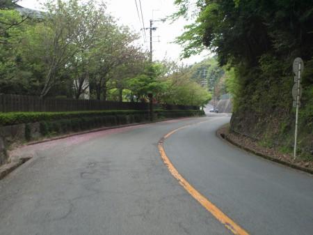 勝尾寺まであと少し