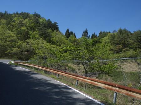 母子から篠山へは少しだけ上る