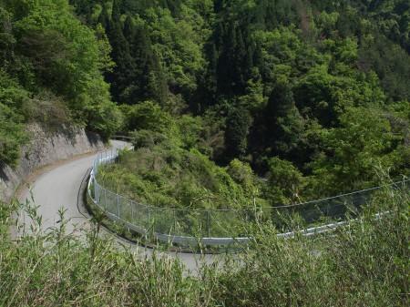 かなりの峠道