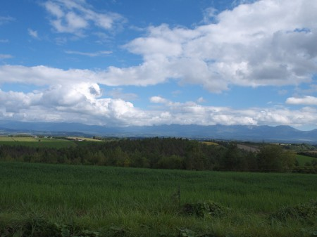 丘からの眺めは秀逸