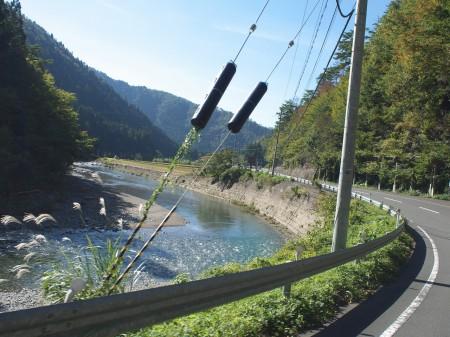 由良川とともに走る
