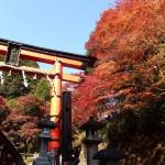 初冬の100kmツーリング!淀川CRで大阪市内から嵐山・六丁峠へ!