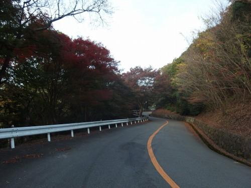 上り坂も秋の風景