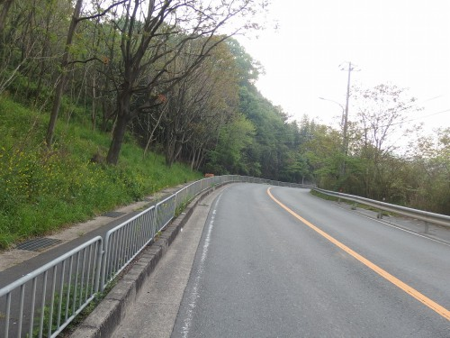 清滝峠ヒルクライム