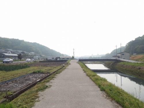 163を避け、山田川沿いへ