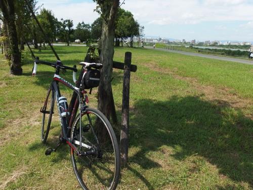 楽しかった淀川!