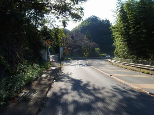 清滝峠を登る