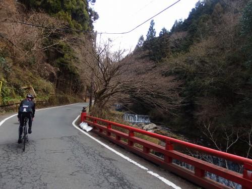 京都を感じる道