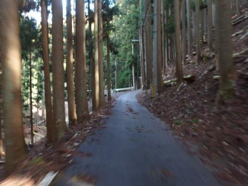 美山方面へ走る
