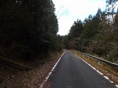 大野対岸道路