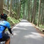 新緑の京都を堪能する!大阪から絶品ハンバーグを目指すセンチュリーライド!
