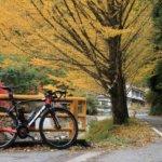 早出の紅葉を探しに走る!篠山・能勢を走る約190km、秋のロングライドへ!!