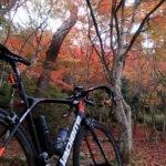 紅葉と絶品パンを求めて!有馬からベーカリー「BENCHi」を経由して三田方面をグルっと走る140km!!
