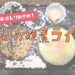 【京都お雑煮ライド】走り納めは京都「一乗寺中谷」で京雑煮を食す!!