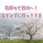 桜を見に亀岡の七谷川へ!春のポタリングへ行ってきました!!